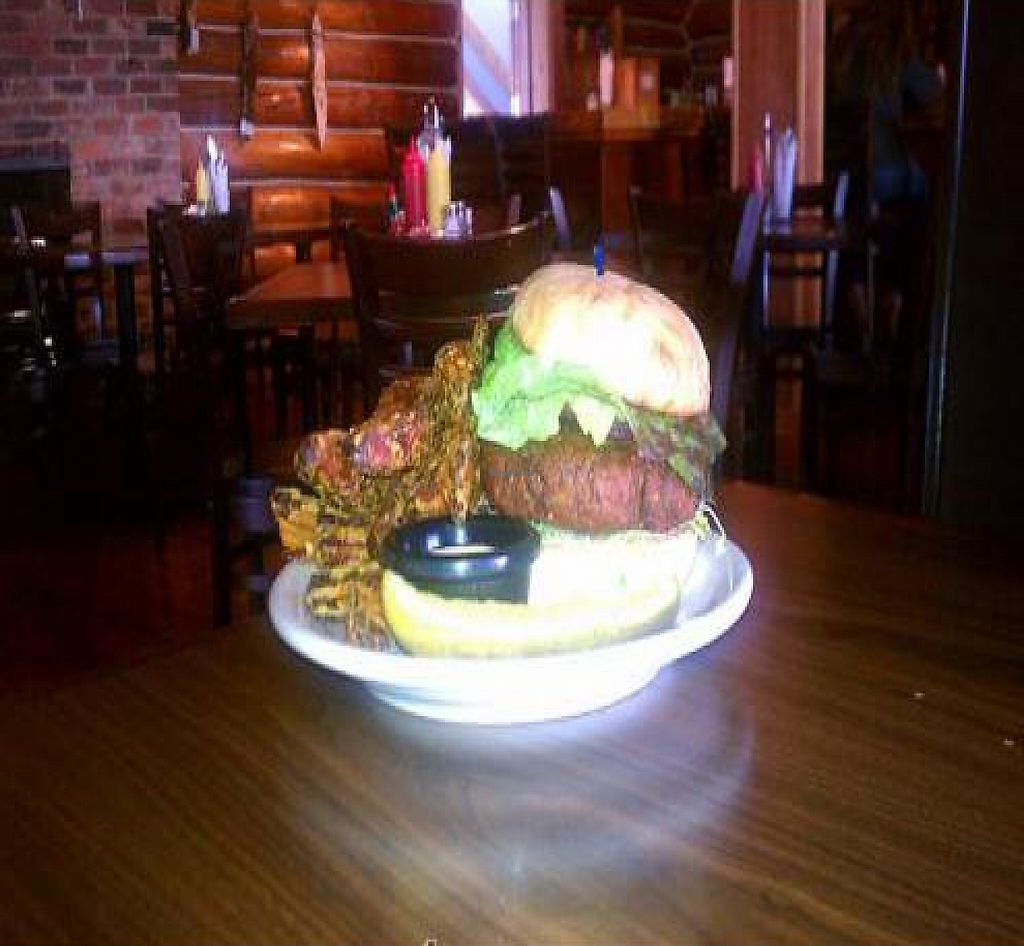"""Photo of Twister Creek  by <a href=""""/members/profile/akpresto"""">akpresto</a> <br/>Mountain Sized Veggie Burger with Sweet Potato Fries <br/> May 10, 2011  - <a href='/contact/abuse/image/26523/188496'>Report</a>"""