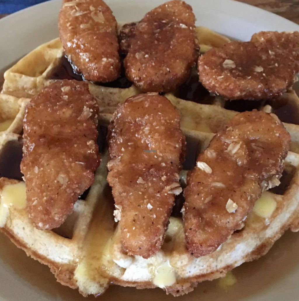"""Photo of Imagine Vegan Cafe  by <a href=""""/members/profile/Pips"""">Pips</a> <br/>Chicken and Waffles  <br/> August 10, 2016  - <a href='/contact/abuse/image/26621/225526'>Report</a>"""