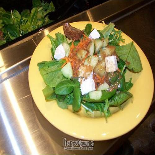 """Photo of CLOSED: Holy Cow on Willamette  by <a href=""""/members/profile/Kathee"""">Kathee</a> <br/>Salad bar features locally grown produce from Sweet Leaf Farm <br/> May 18, 2011  - <a href='/contact/abuse/image/26661/8683'>Report</a>"""