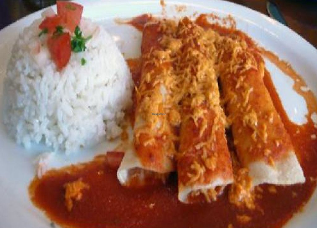 """Photo of Mama's International Tamales  by <a href=""""/members/profile/quarrygirl"""">quarrygirl</a> <br/>Vegan Daiya Cheese Enchiladas at Mama's Hot Tamales Cafe - photo by MR MEANER <br/> January 15, 2012  - <a href='/contact/abuse/image/26666/189916'>Report</a>"""