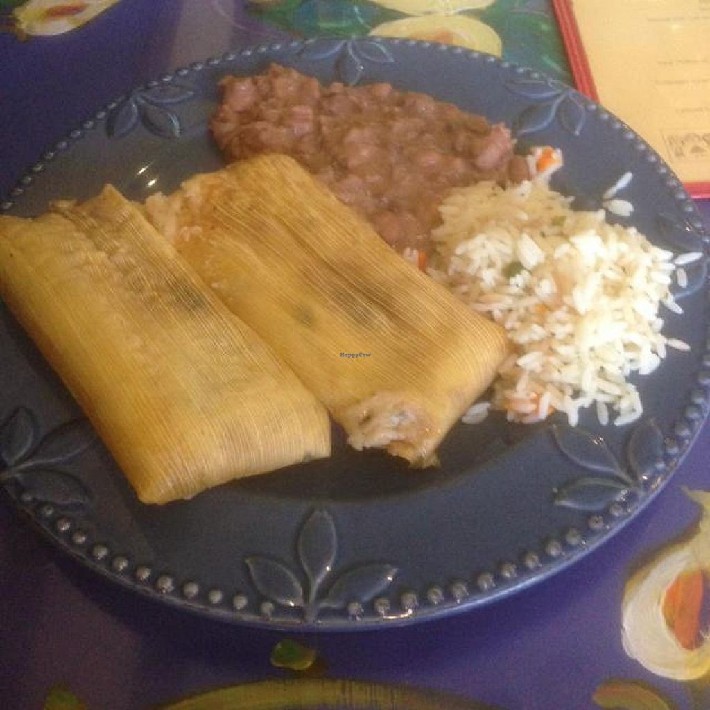 """Photo of Mama's International Tamales  by <a href=""""/members/profile/gpwp23"""">gpwp23</a> <br/>spinach and mushroom tamales, rice and beans! <br/> September 20, 2014  - <a href='/contact/abuse/image/26666/80542'>Report</a>"""