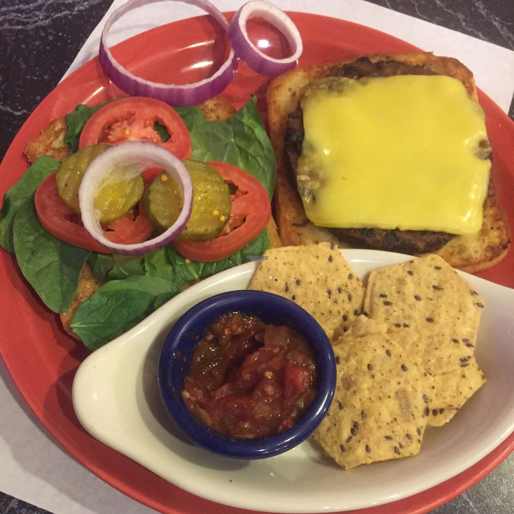 """Photo of The Cheeze Factory Restaurant  by <a href=""""/members/profile/happycowgirl"""">happycowgirl</a> <br/>delicious veggie burgers with vegan cheese <br/> January 27, 2017  - <a href='/contact/abuse/image/2667/217665'>Report</a>"""