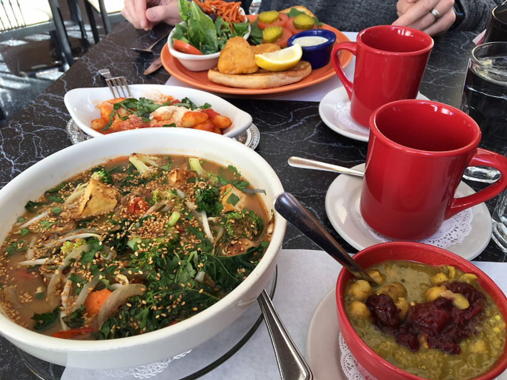 """Photo of The Cheeze Factory Restaurant  by <a href=""""/members/profile/Mpveg"""">Mpveg</a> <br/>miso bowl, chickpea chili, gnocchi and fish sandwich <br/> February 3, 2017  - <a href='/contact/abuse/image/2667/221730'>Report</a>"""