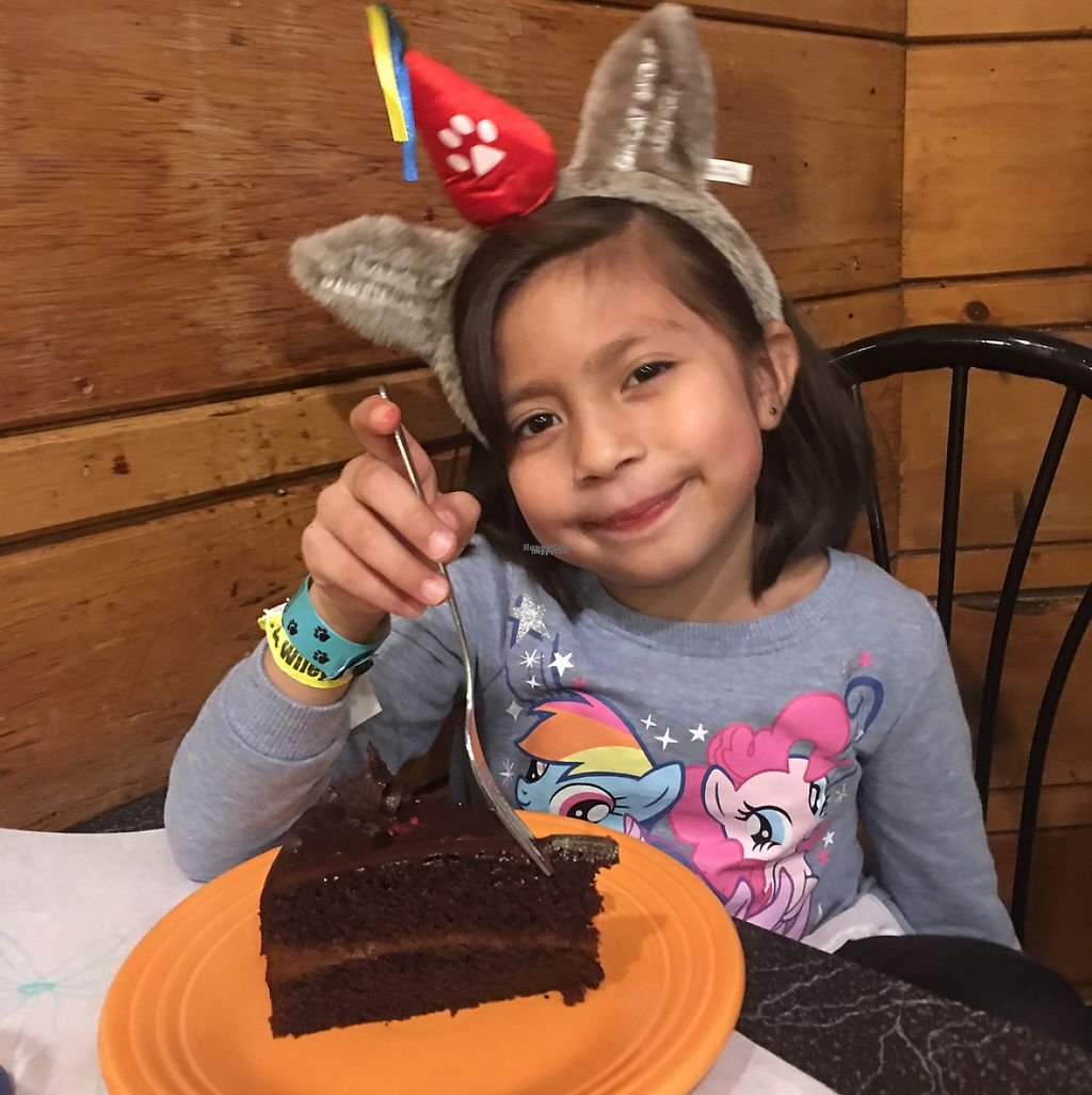 """Photo of The Cheeze Factory Restaurant  by <a href=""""/members/profile/Julie%26Ivan"""">Julie&Ivan</a> <br/>birthday girl with Glorious Chocolate Cake <br/> February 25, 2017  - <a href='/contact/abuse/image/2667/230147'>Report</a>"""