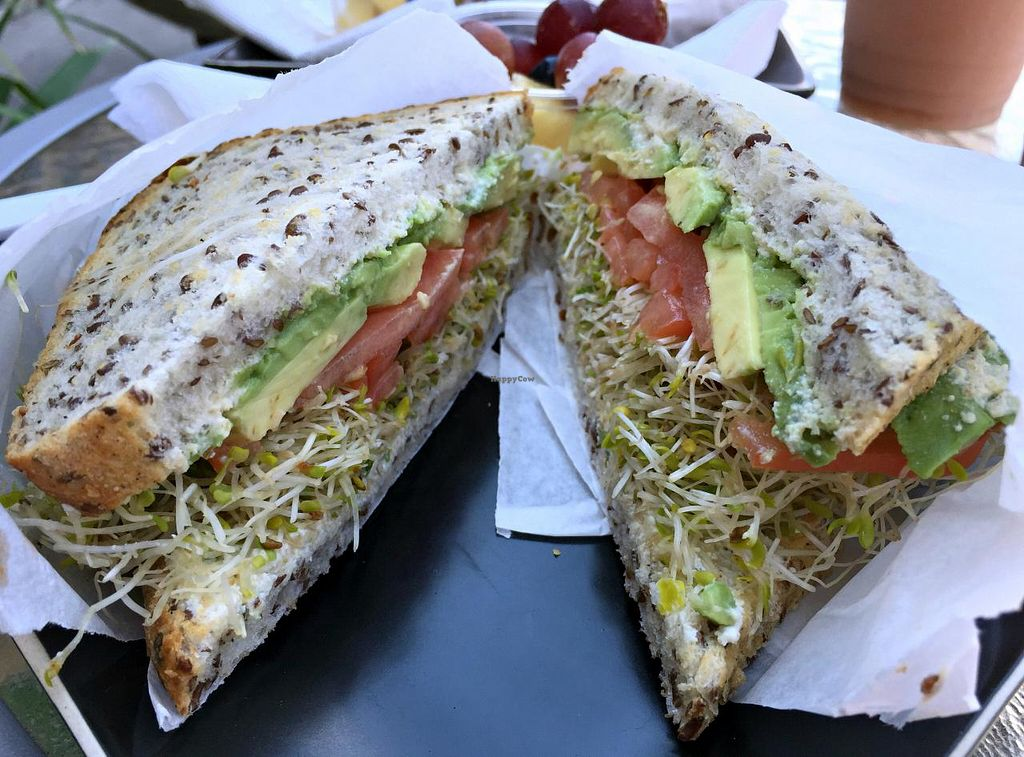 Photo of Fresh Healthy Eatery and Juice Bar  by Rambling Dream <br/>Veggie sandwich with sprouts & tofu spread, on seeded bread.   <br/> July 25, 2015  - <a href='/contact/abuse/image/26716/110882'>Report</a>