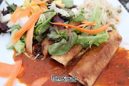 """Photo of El Nuevo Mexicano  by <a href=""""/members/profile/veganmiss"""">veganmiss</a> <br/>Vegan flautas <br/> July 21, 2012  - <a href='/contact/abuse/image/26760/34739'>Report</a>"""