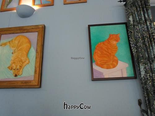 "Photo of CLOSED: Caffe Orientale Tearoom  by <a href=""/members/profile/avokadomania"">avokadomania</a> <br/>;) <br/> December 28, 2012  - <a href='/contact/abuse/image/26805/42019'>Report</a>"