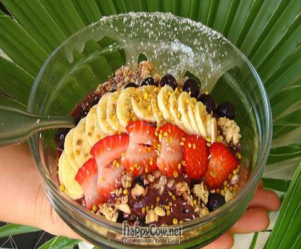 """Photo of Choice Health Bar  by <a href=""""/members/profile/ChoiceHealthBar"""">ChoiceHealthBar</a> <br/>choice acai bowl <br/> June 2, 2011  - <a href='/contact/abuse/image/26808/199611'>Report</a>"""
