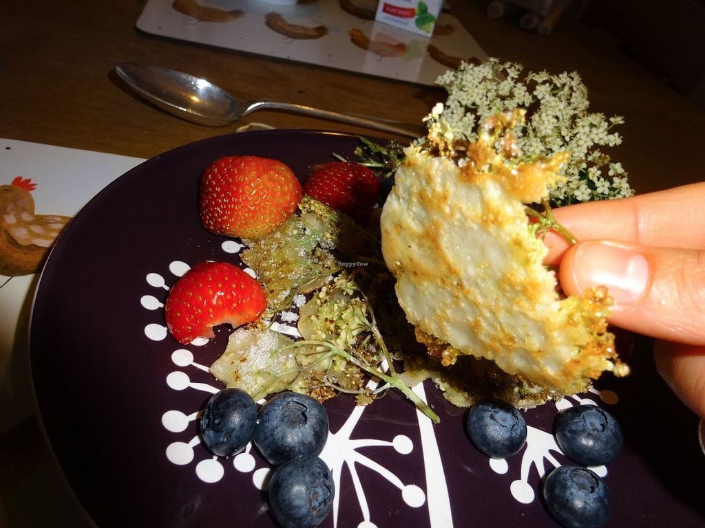 """Photo of Vegetarian Lakeland Living  by <a href=""""/members/profile/gins"""">gins</a> <br/>Elderflower Pancakes <br/> June 22, 2016  - <a href='/contact/abuse/image/26833/155465'>Report</a>"""