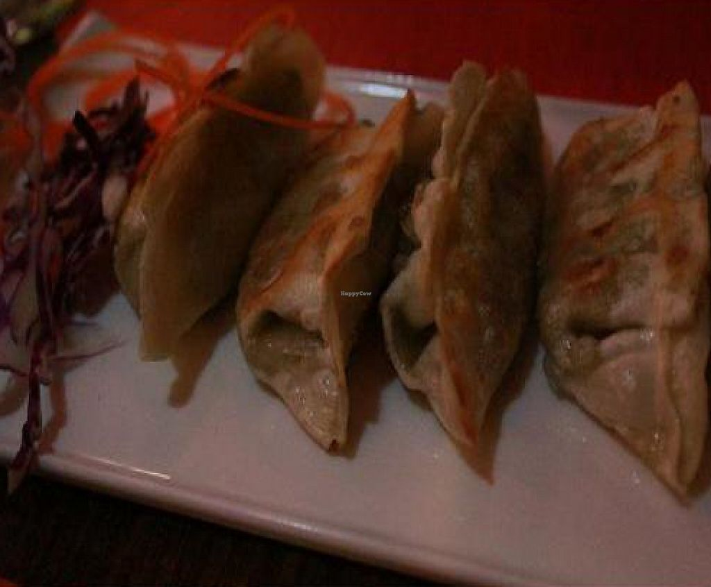 """Photo of Urban Vegan - Lake View  by <a href=""""/members/profile/veganmiss"""">veganmiss</a> <br/>Grilled Veggie Dumplings <br/> December 22, 2011  - <a href='/contact/abuse/image/26967/190925'>Report</a>"""