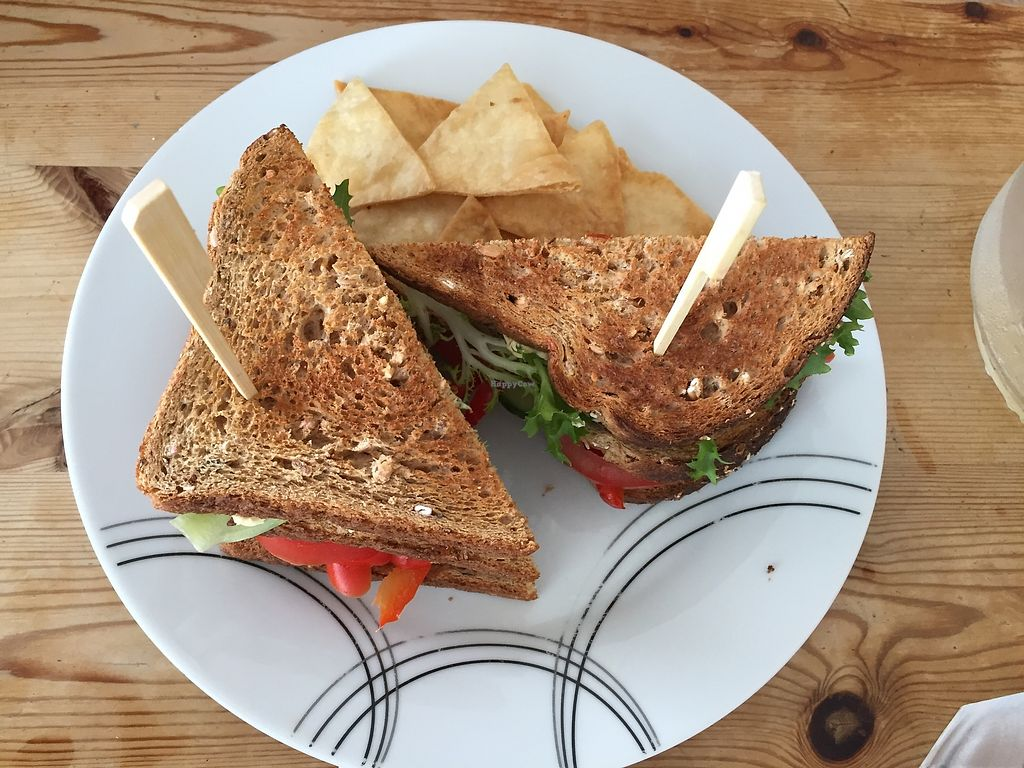 """Photo of The Beached Lamb Cafe  by <a href=""""/members/profile/Ashni"""">Ashni</a> <br/>Vegan club sandwich <br/> July 9, 2017  - <a href='/contact/abuse/image/26982/278230'>Report</a>"""
