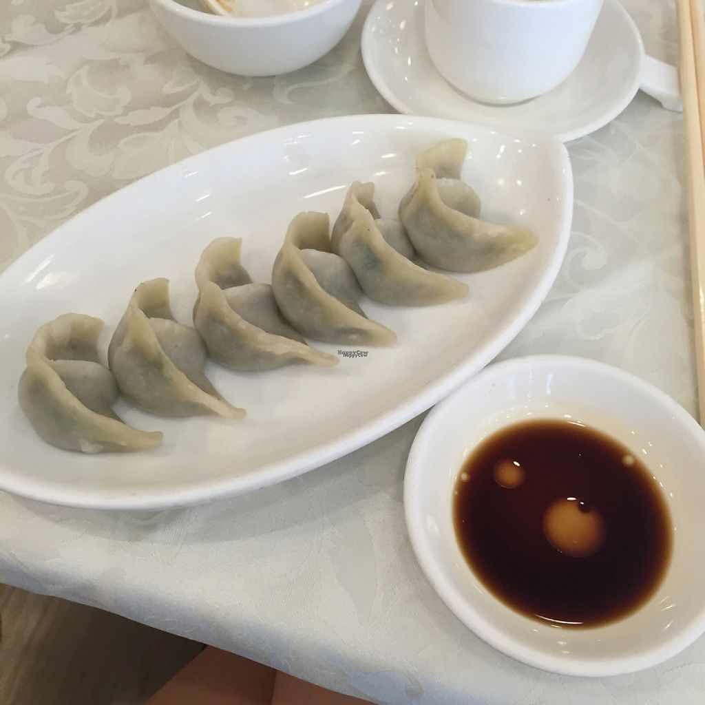 "Photo of CLOSED: Kung Tak Lam - Shatin  by <a href=""/members/profile/SamanthaIngridHo"">SamanthaIngridHo</a> <br/>Veggie and mushroom dumplings <br/> December 28, 2016  - <a href='/contact/abuse/image/26993/205672'>Report</a>"