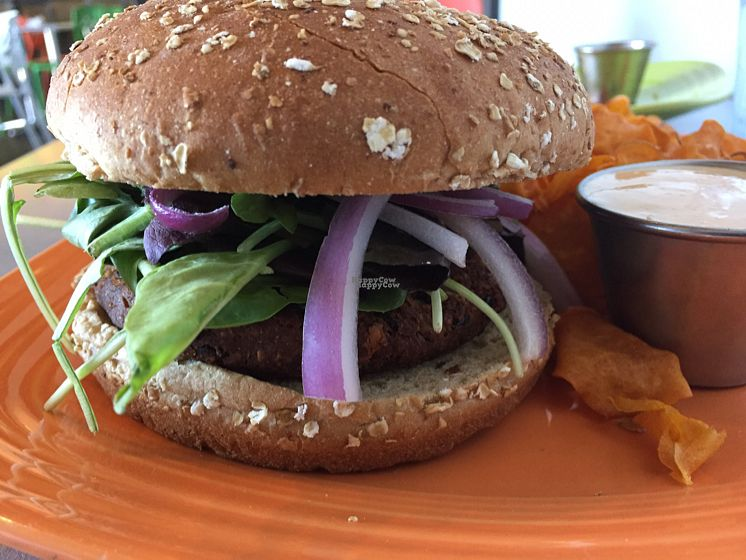 "Photo of Lotus Leaf Cafe  by <a href=""/members/profile/ScottElswick"">ScottElswick</a> <br/>black. bean burger  <br/> October 8, 2016  - <a href='/contact/abuse/image/27044/180698'>Report</a>"