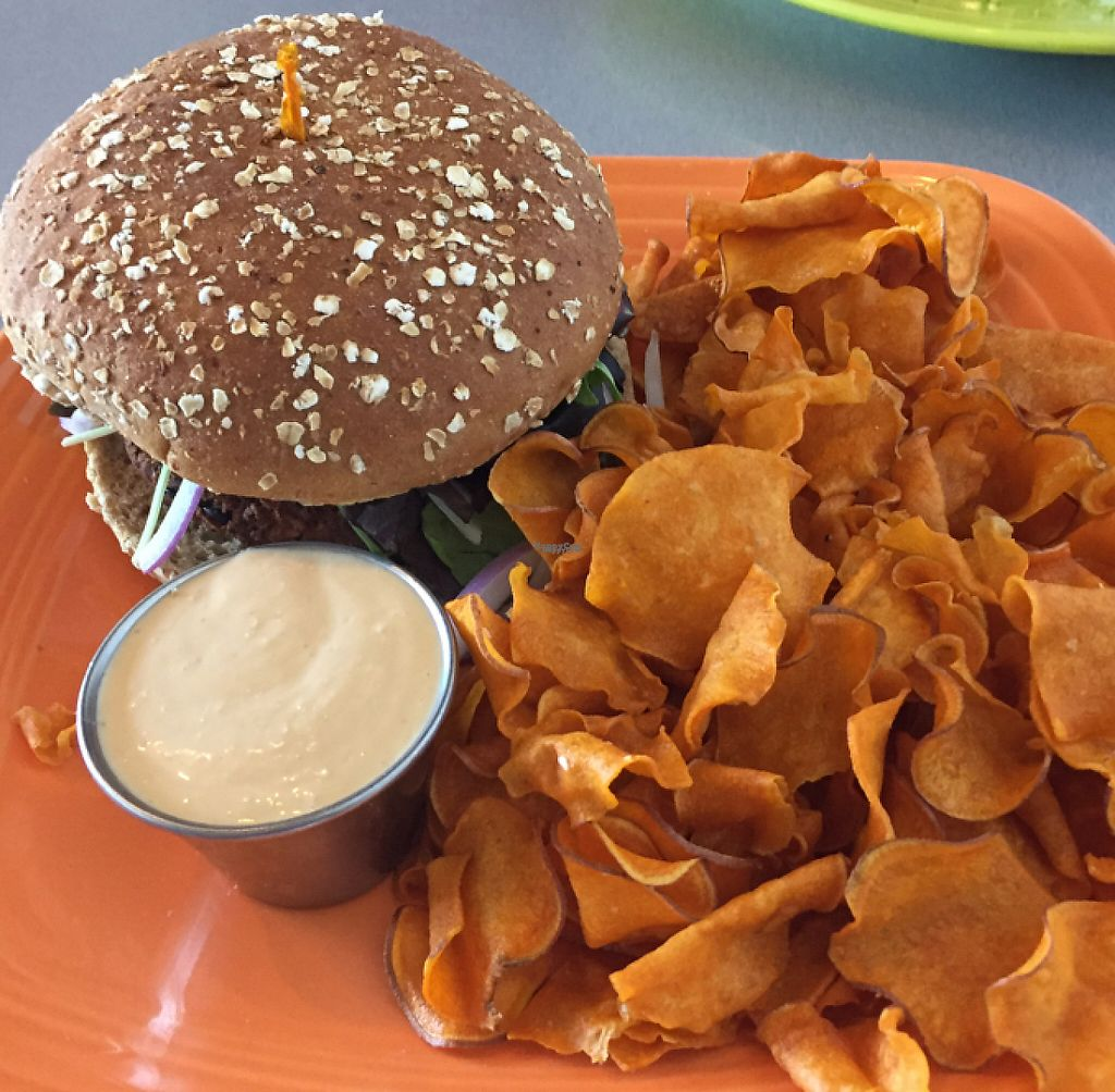 "Photo of Lotus Leaf Cafe  by <a href=""/members/profile/ScottElswick"">ScottElswick</a> <br/>black bean burger with house made sweet potato chips <br/> October 8, 2016  - <a href='/contact/abuse/image/27044/200030'>Report</a>"