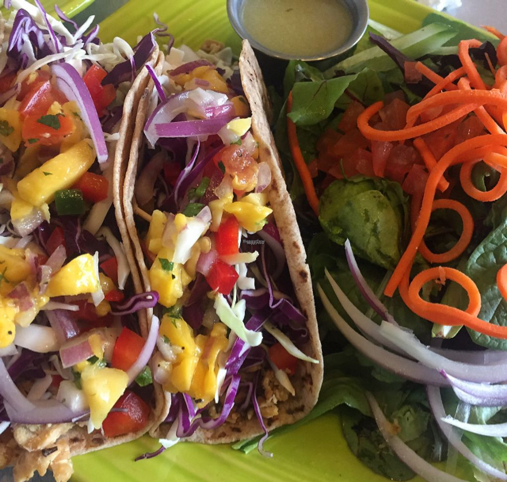"Photo of Lotus Leaf Cafe  by <a href=""/members/profile/GMUGrad2002"">GMUGrad2002</a> <br/>veggie tacos <br/> March 29, 2017  - <a href='/contact/abuse/image/27044/242422'>Report</a>"