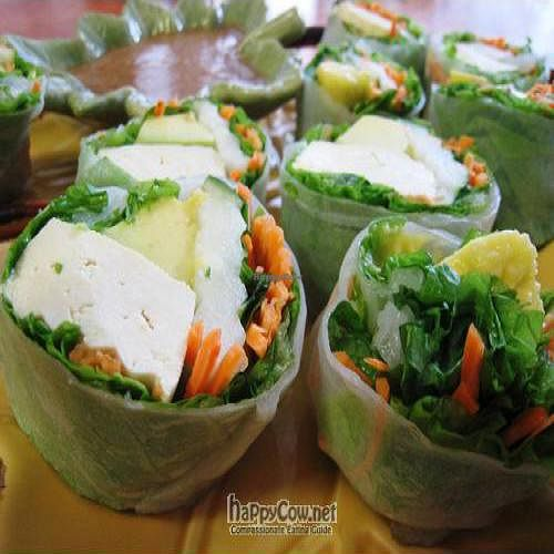 """Photo of Tina's Garden Gourmet Cafe  by <a href=""""/members/profile/tomatochild"""">tomatochild</a> <br/>tofu spring rolls <br/> September 11, 2011  - <a href='/contact/abuse/image/27071/10564'>Report</a>"""