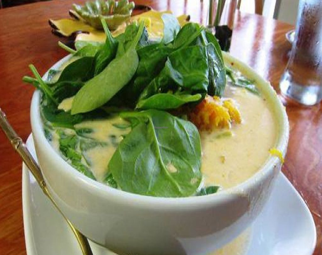 """Photo of Tina's Garden Gourmet Cafe  by <a href=""""/members/profile/tomatochild"""">tomatochild</a> <br/>coconut milk soup with tofu (tom kha) <br/> September 11, 2011  - <a href='/contact/abuse/image/27071/199182'>Report</a>"""