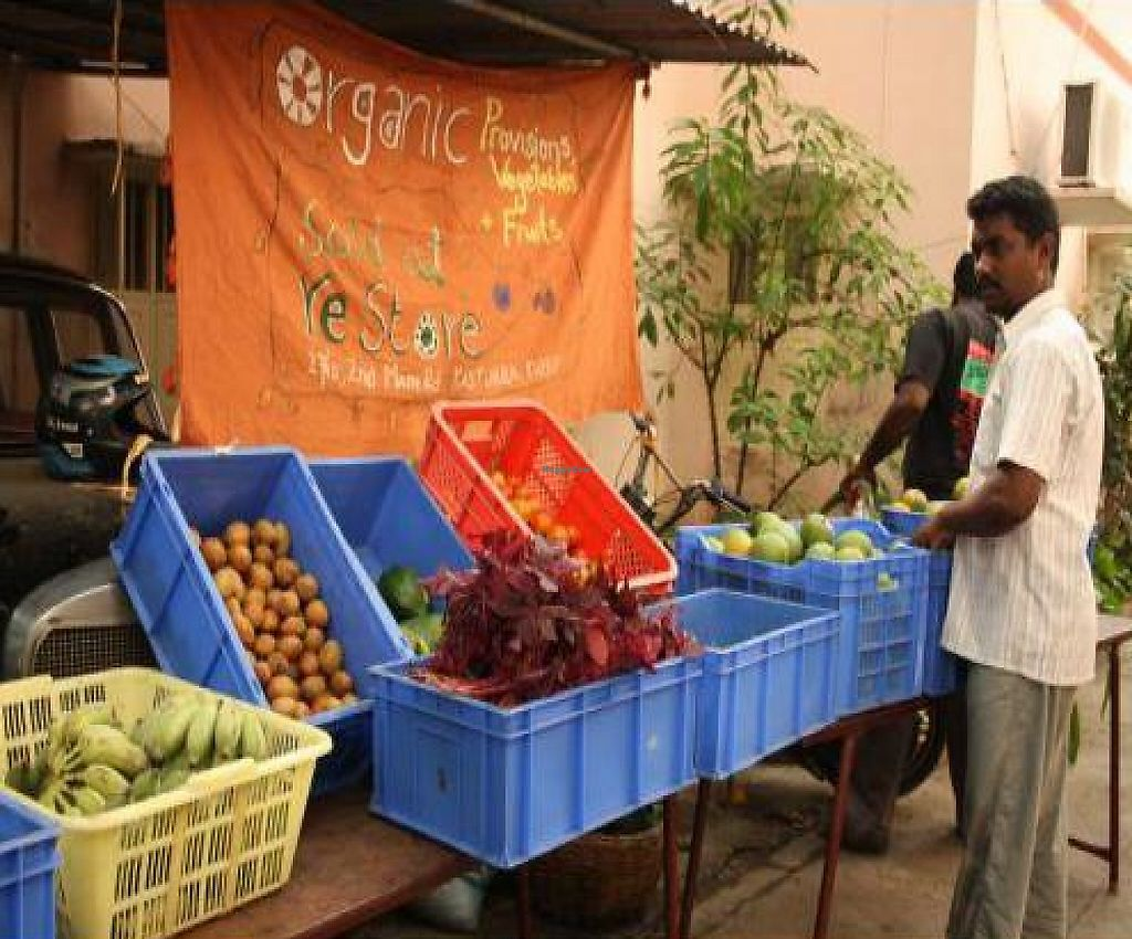 "Photo of reStore  by <a href=""/members/profile/Radhika%20Rammohan"">Radhika Rammohan</a> <br/>Baskets of produce laid out at our market <br/> November 15, 2011  - <a href='/contact/abuse/image/27149/194146'>Report</a>"
