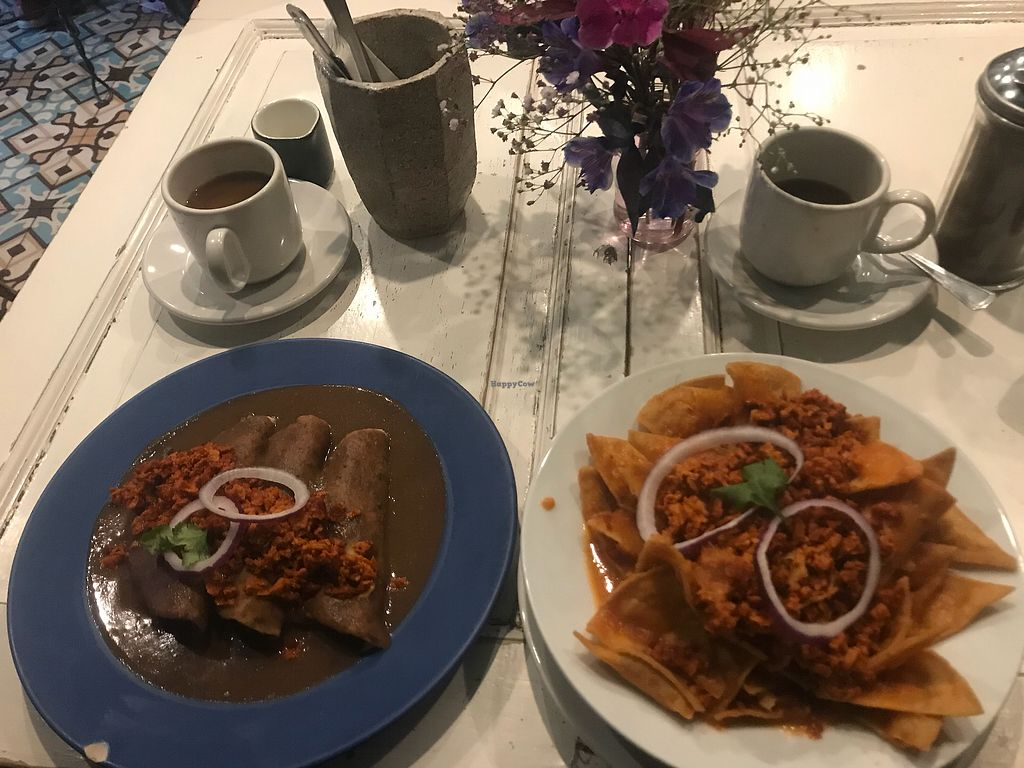 """Photo of Pan Comido Vegetariano - Tonala   by <a href=""""/members/profile/LGraves"""">LGraves</a> <br/>Kewt  <br/> October 23, 2017  - <a href='/contact/abuse/image/27201/318194'>Report</a>"""