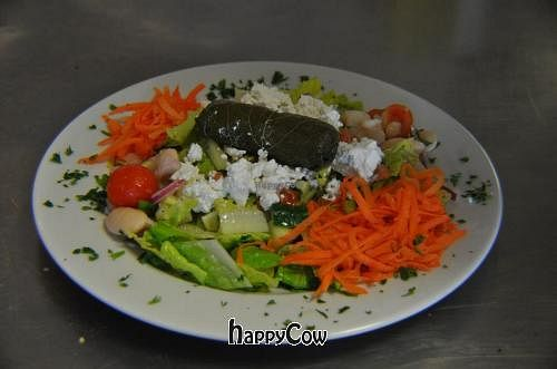 """Photo of Agora Mediterranean Kitchen  by <a href=""""/members/profile/agora"""">agora</a> <br/>Turkish Salad <br/> April 7, 2013  - <a href='/contact/abuse/image/27218/46662'>Report</a>"""