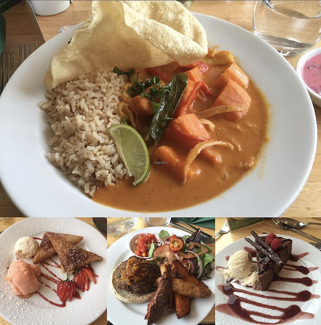 """Photo of River Green Cafe  by <a href=""""/members/profile/TheAccessibleVegan"""">TheAccessibleVegan</a> <br/>Curry <br/> August 3, 2017  - <a href='/contact/abuse/image/27317/288314'>Report</a>"""