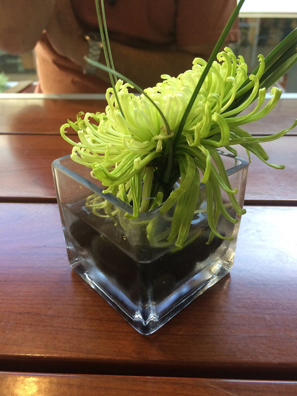 """Photo of Lean and Green Cafe  by <a href=""""/members/profile/SteffanyPel"""">SteffanyPel</a> <br/>Table decor <br/> November 4, 2017  - <a href='/contact/abuse/image/27351/321738'>Report</a>"""