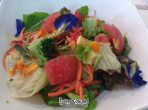 """Photo of Sustaina  by <a href=""""/members/profile/eric"""">eric</a> <br/>Beautiful salad with edible flowers <br/> April 18, 2012  - <a href='/contact/abuse/image/27429/30672'>Report</a>"""