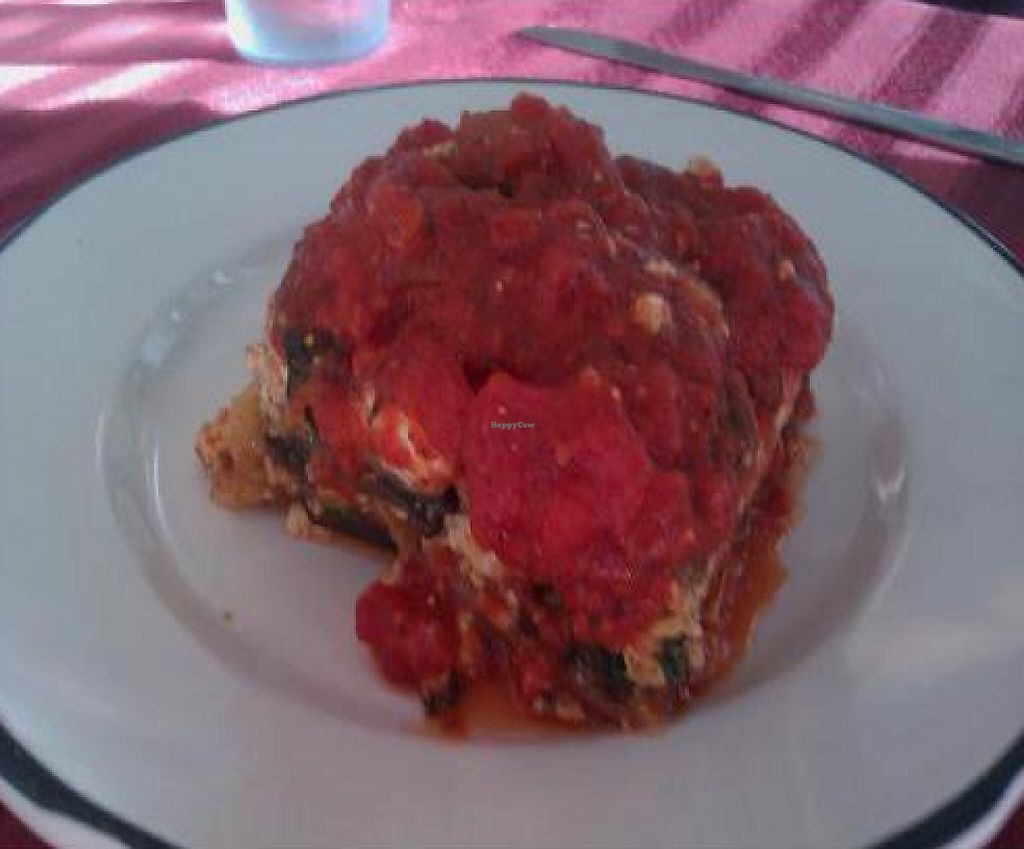 "Photo of Munch  by <a href=""/members/profile/veganmiss"">veganmiss</a> <br/>Vegan Lasagna <br/> December 22, 2011  - <a href='/contact/abuse/image/27455/190902'>Report</a>"
