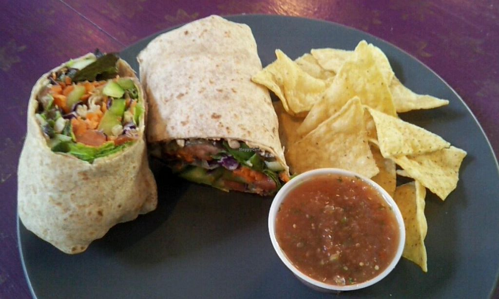 Photo of Cafe Solstice  by Navegante <br/>Veggie wrap with chips and salsa (05-27-2014) <br/> May 27, 2014  - <a href='/contact/abuse/image/27482/70852'>Report</a>