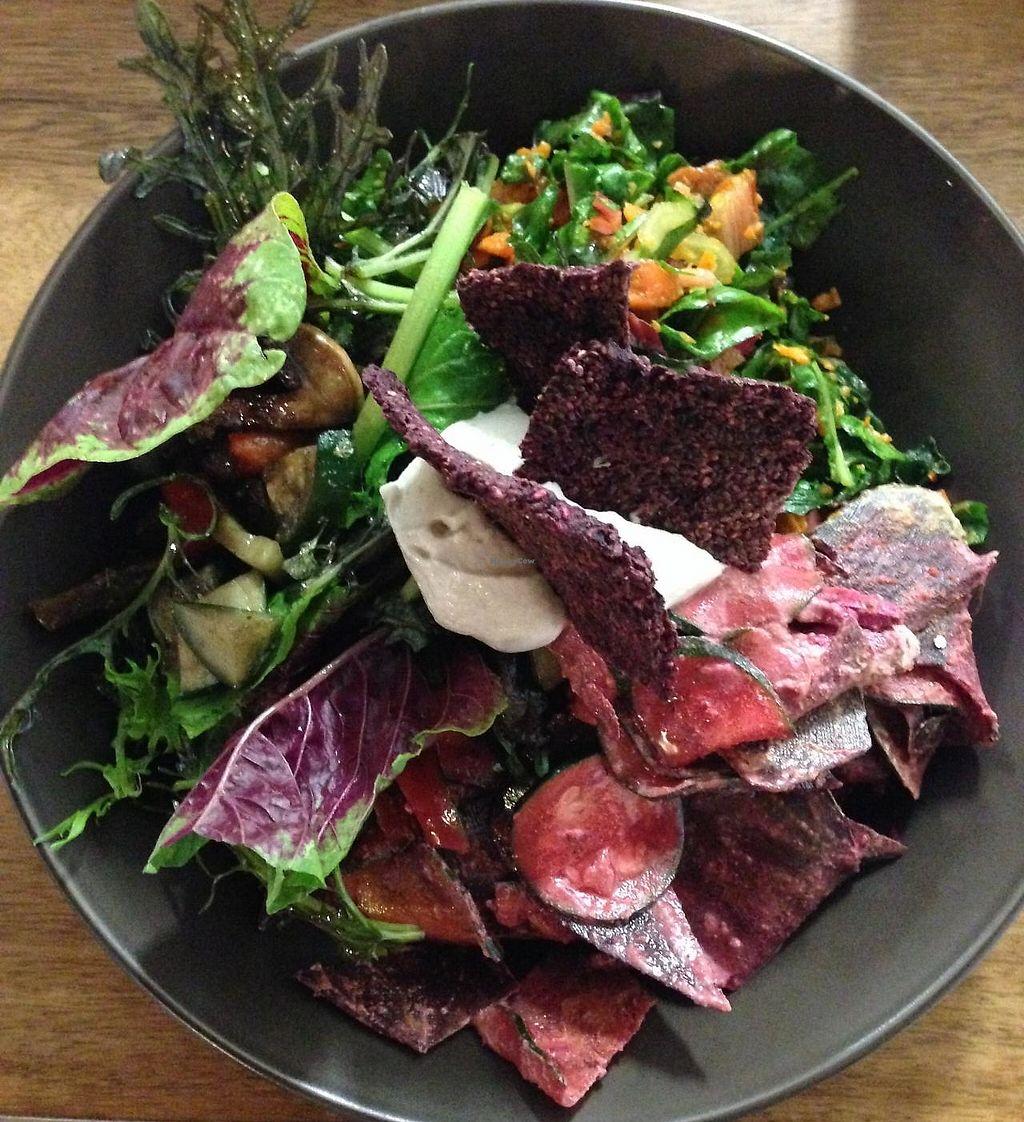 "Photo of Shokuiku  by <a href=""/members/profile/shokuiku"">shokuiku</a> <br/>raw organic lunch salad plate <br/> March 11, 2015  - <a href='/contact/abuse/image/27483/261856'>Report</a>"