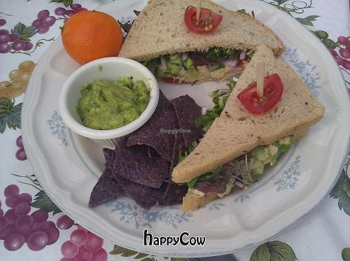 "Photo of Steamed - Organic Vegetarian Cuisine  by <a href=""/members/profile/eric"">eric</a> <br/>Un tuna sandwich <br/> March 2, 2013  - <a href='/contact/abuse/image/27502/44938'>Report</a>"