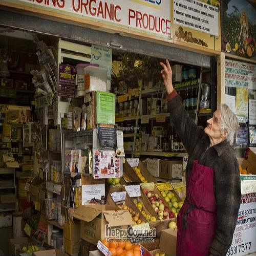 """Photo of CLOSED: Natural Health Supplies  by <a href=""""/members/profile/InnesPark"""">InnesPark</a> <br/>Bruce at Natural Health Supplies, probably the world's longest running vegan business! <br/> August 3, 2011  - <a href='/contact/abuse/image/27737/9940'>Report</a>"""