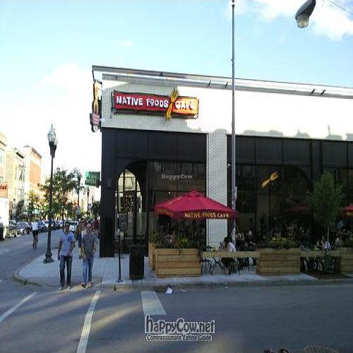 """Photo of Native Foods - Wicker Park  by <a href=""""/members/profile/happycowgirl"""">happycowgirl</a> <br/>Milwaukee & Honore <br/> August 9, 2011  - <a href='/contact/abuse/image/27740/10015'>Report</a>"""