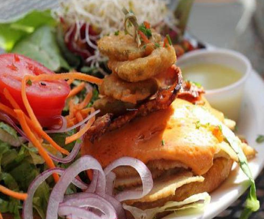 """Photo of Native Foods - Wicker Park  by <a href=""""/members/profile/veganmiss"""">veganmiss</a> <br/>Oklahoma Bacon Cheeseburger <br/> December 22, 2011  - <a href='/contact/abuse/image/27740/190908'>Report</a>"""