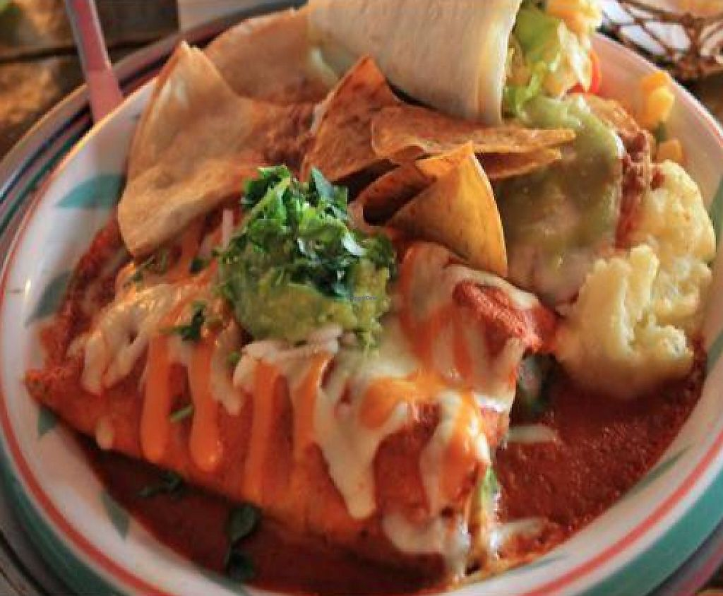"Photo of El Pancho  by <a href=""/members/profile/KirstenLoreen"">KirstenLoreen</a> <br/>This is the veggie enchilada set. So delish!  <br/> February 13, 2012  - <a href='/contact/abuse/image/27766/223077'>Report</a>"