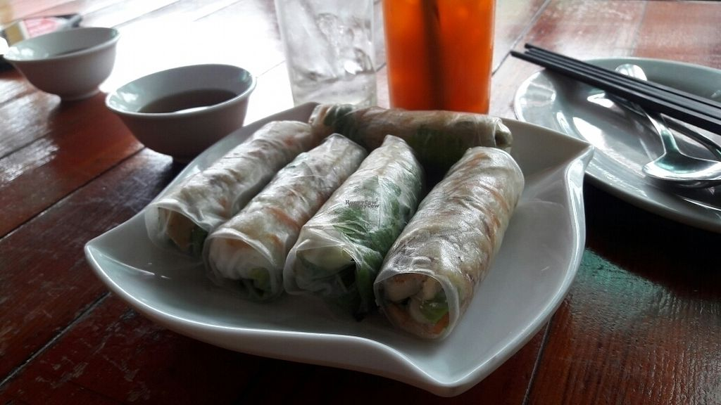 "Photo of Vegetarian in the Golden Age  by <a href=""/members/profile/Olesya"">Olesya</a> <br/>spring rolls <br/> September 15, 2016  - <a href='/contact/abuse/image/27816/175826'>Report</a>"