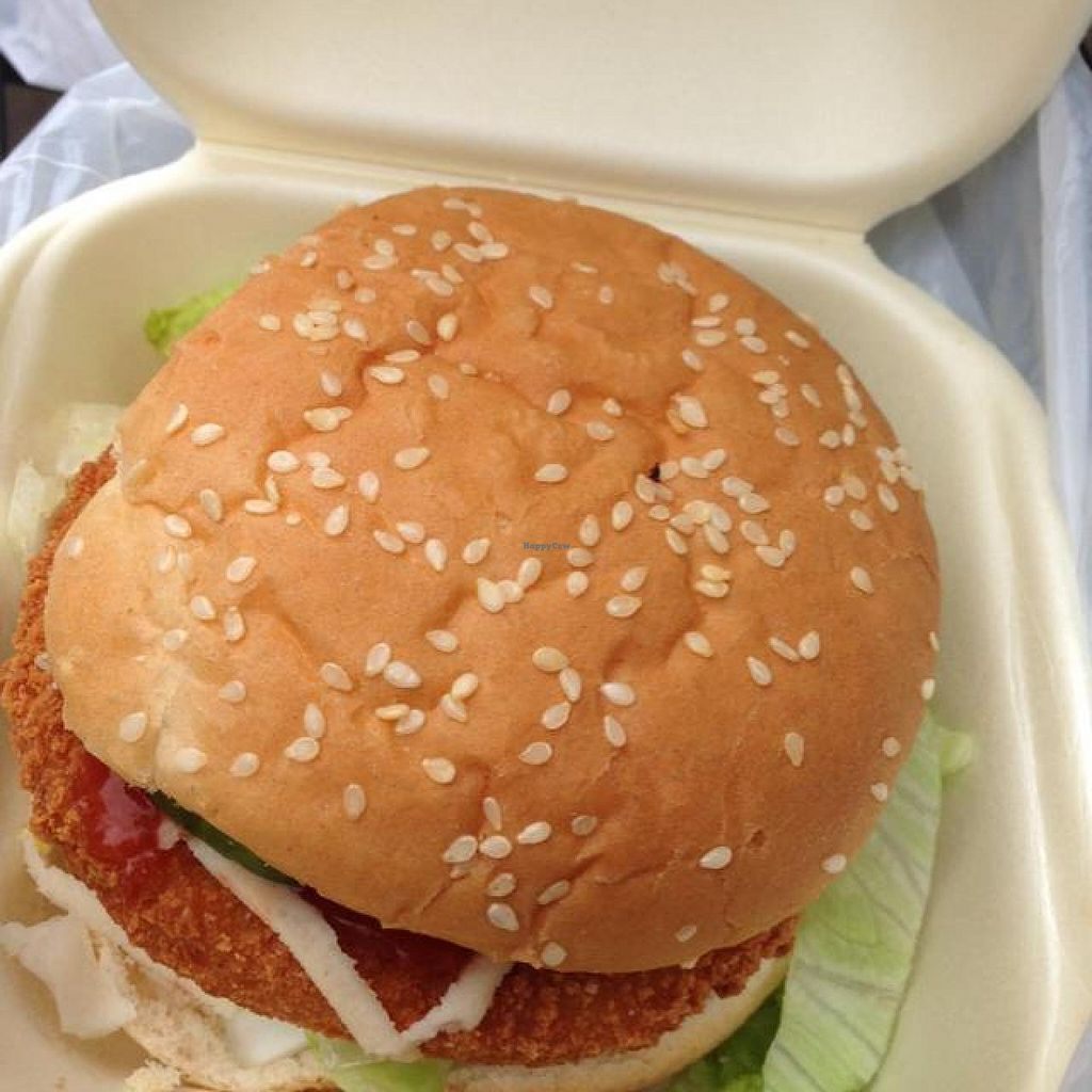 """Photo of Veggie Lounge  by <a href=""""/members/profile/wrathofmanatee"""">wrathofmanatee</a> <br/>vegan chicken burger <br/> May 26, 2014  - <a href='/contact/abuse/image/27845/70793'>Report</a>"""