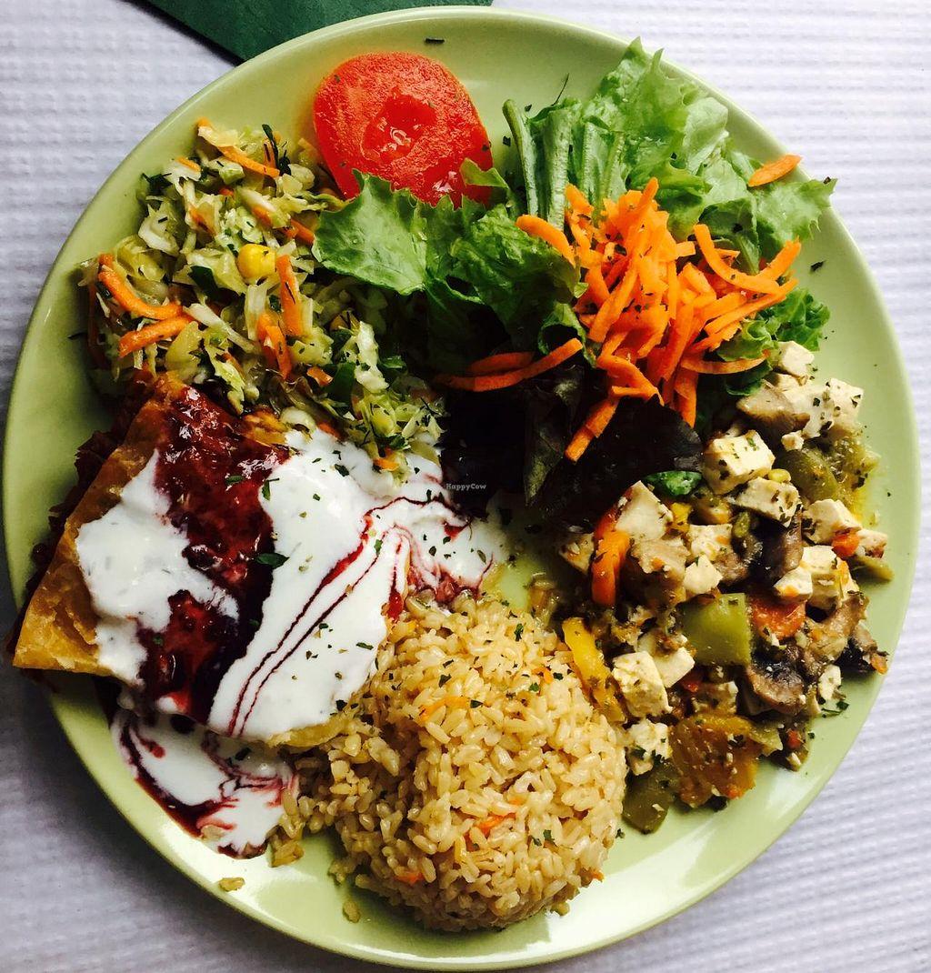 """Photo of Oasis Vegetariano  by <a href=""""/members/profile/RaquelMesquita"""">RaquelMesquita</a> <br/>Prato normal misto <br/> July 15, 2015  - <a href='/contact/abuse/image/27871/109484'>Report</a>"""