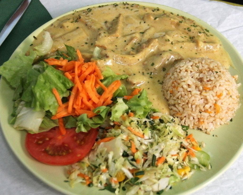 """Photo of Oasis Vegetariano  by <a href=""""/members/profile/reissausta%20ja%20ruokaa"""">reissausta ja ruokaa</a> <br/>Seitan sauce with mustard. Not vegan (I think it could be easily vegan if the restaurant would use soy cream).  <br/> July 30, 2016  - <a href='/contact/abuse/image/27871/241327'>Report</a>"""