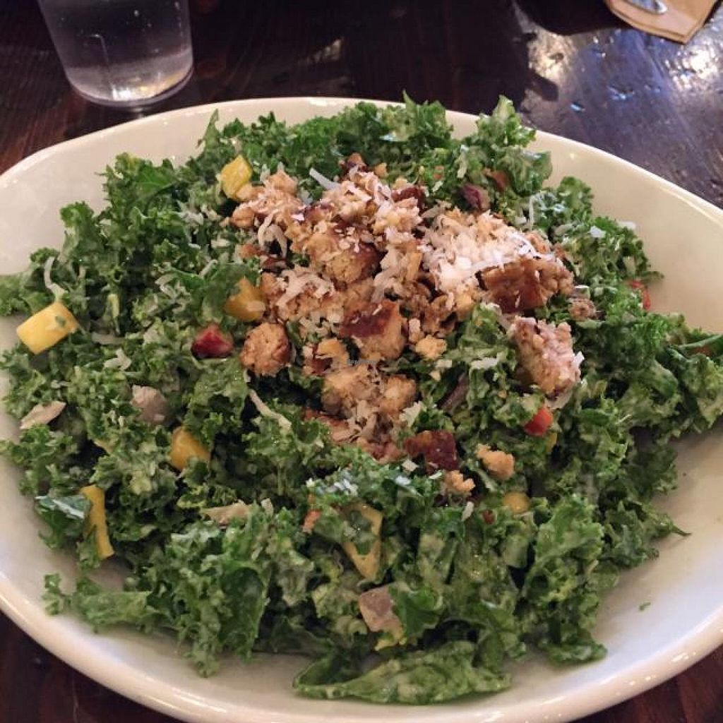 Photo of Native Foods - Lakeview  by drees2014 <br/>salad <br/> November 26, 2014  - <a href='/contact/abuse/image/27914/86561'>Report</a>