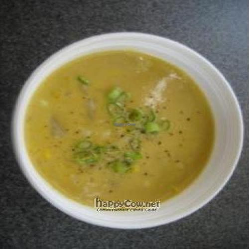 """Photo of CLOSED: Melissa's Sidewalk Cafe  by <a href=""""/members/profile/Micheal22reahl"""">Micheal22reahl</a> <br/>Corn Chowder <br/> September 9, 2011  - <a href='/contact/abuse/image/27941/10526'>Report</a>"""