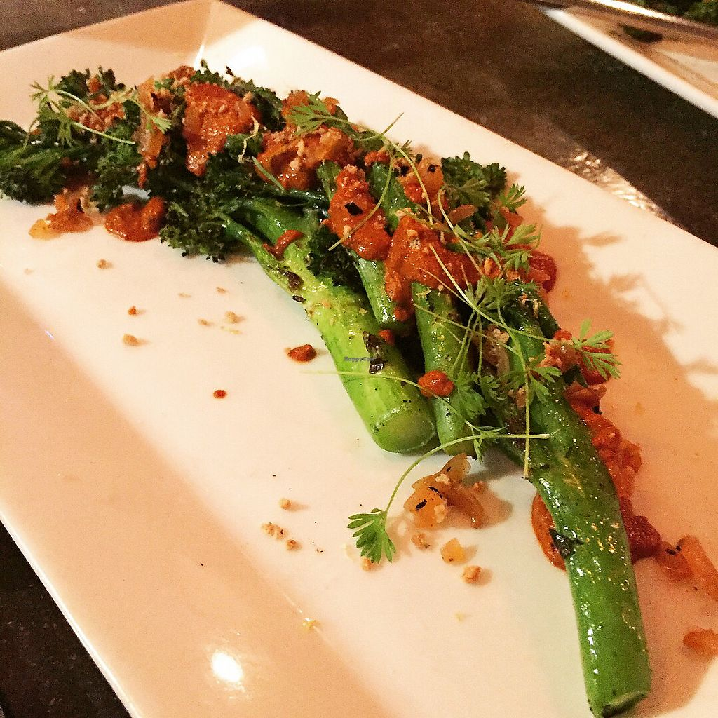 "Photo of Plant  by <a href=""/members/profile/sarahFL"">sarahFL</a> <br/>Broccolini <br/> November 17, 2017  - <a href='/contact/abuse/image/27945/326545'>Report</a>"