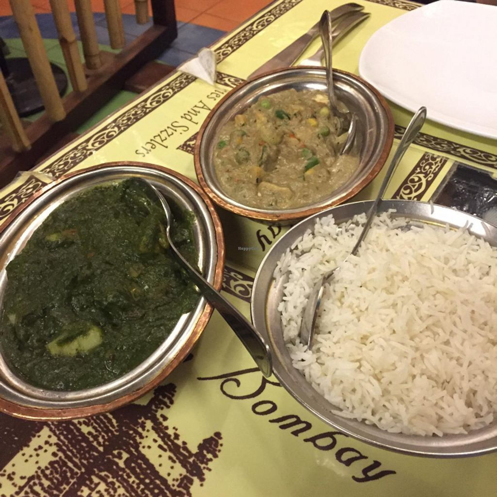 """Photo of Salaam Bombay  by <a href=""""/members/profile/TheEverydayVegan"""">TheEverydayVegan</a> <br/>Saag Aloo and Mixed Vegetable Curry - plain rice! <br/> July 10, 2015  - <a href='/contact/abuse/image/28078/108793'>Report</a>"""