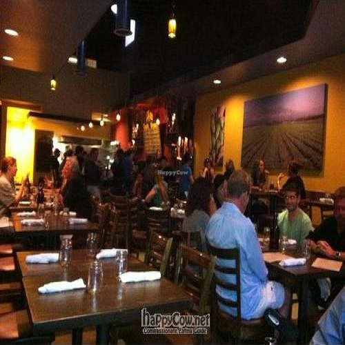 """Photo of CLOSED: Local Habit  by <a href=""""/members/profile/richieandmona"""">richieandmona</a> <br/> August 31, 2011  - <a href='/contact/abuse/image/28126/10323'>Report</a>"""