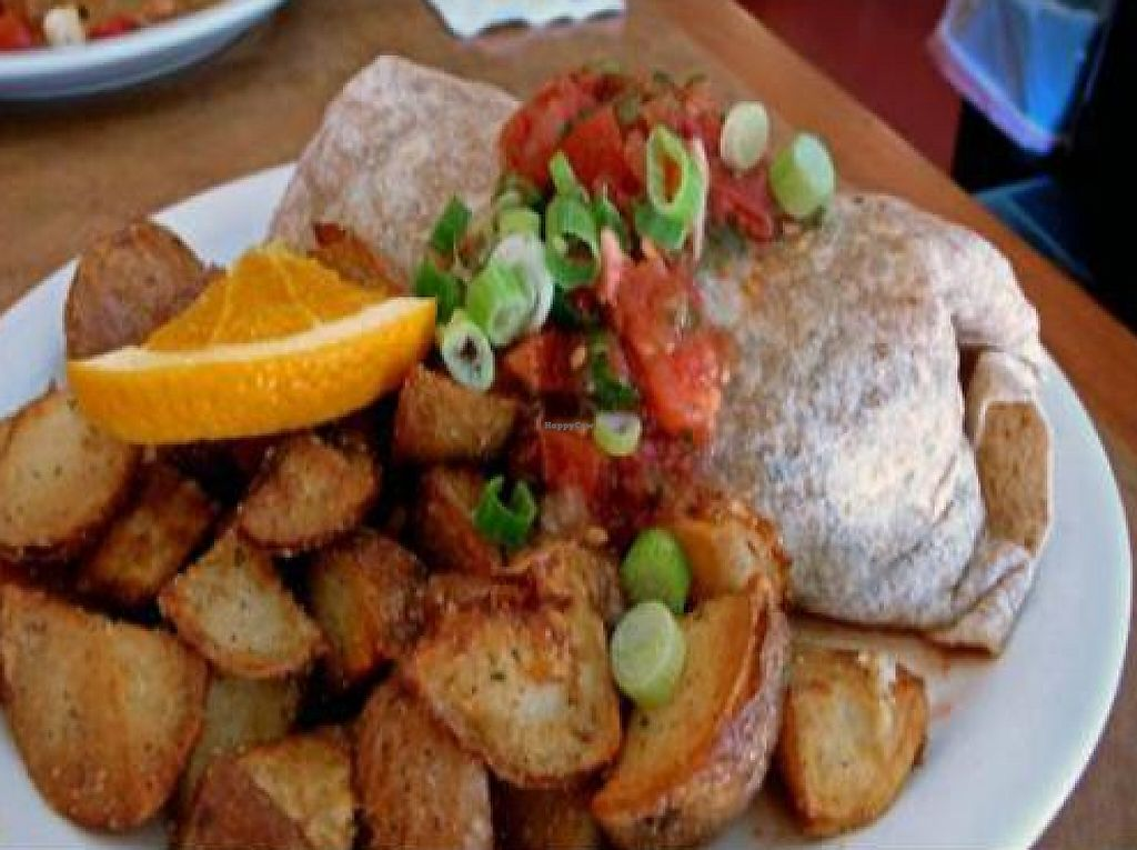 """Photo of Paradox Palace Cafe  by <a href=""""/members/profile/quarrygirl"""">quarrygirl</a> <br/>vegan fiesta burrito: a blend of seasoned vegetables, tofu, house chili wrapped in a wheat tortilla topped with salsa and green onions <br/> December 27, 2011  - <a href='/contact/abuse/image/2826/189988'>Report</a>"""