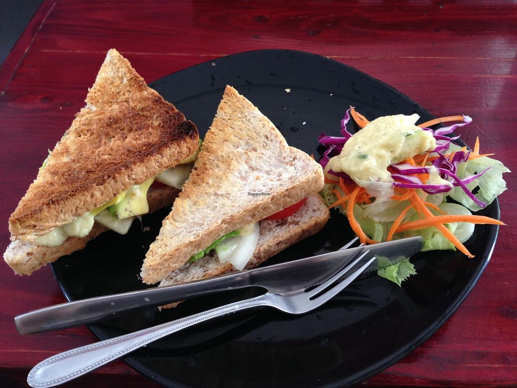 "Photo of CLOSED: Beetroot Stories Cafe  by <a href=""/members/profile/Pamina"">Pamina</a> <br/>Avocado Sandwich @ Beetroot Stories Cafe, Chiang Mai <br/> December 26, 2015  - <a href='/contact/abuse/image/28282/129859'>Report</a>"