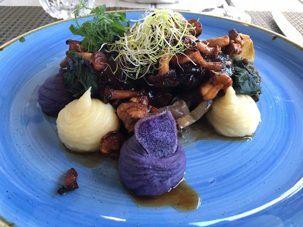 "Photo of Kopps  by <a href=""/members/profile/AustinJardinera"">AustinJardinera</a> <br/>stuffed chard with potato puree <br/> July 9, 2016  - <a href='/contact/abuse/image/28313/158745'>Report</a>"