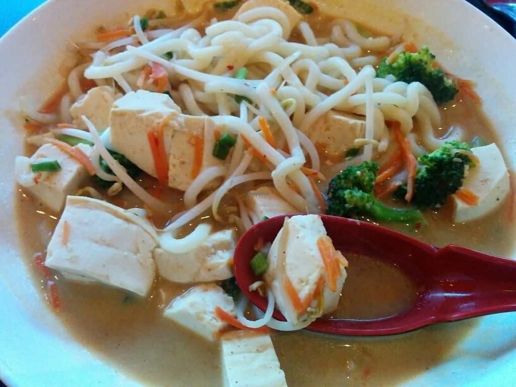 "Photo of Jenni's Noodle House - S Shepherd  by <a href=""/members/profile/MizzB"">MizzB</a> <br/>tofu curry <br/> May 6, 2017  - <a href='/contact/abuse/image/28388/256039'>Report</a>"