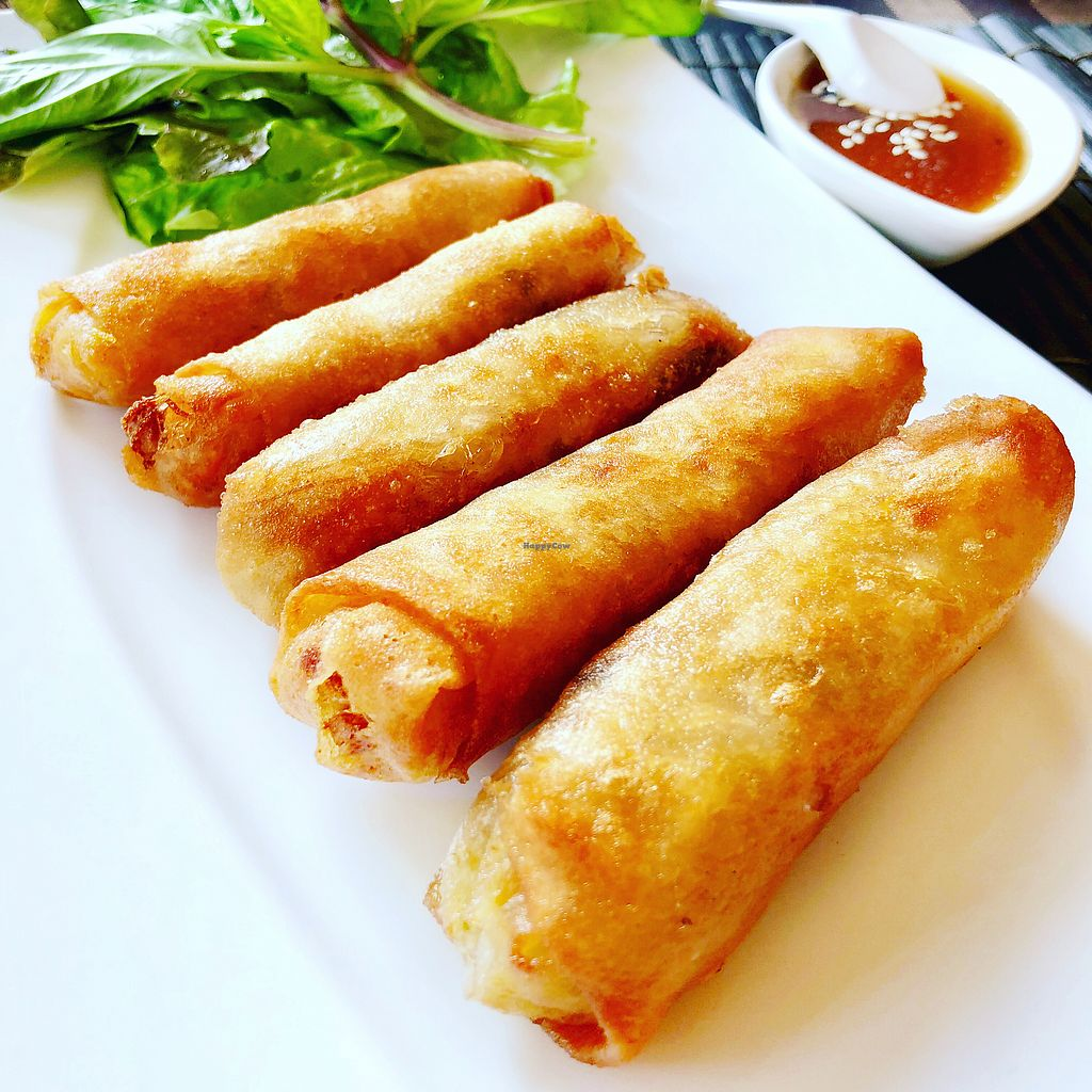 """Photo of May Veggie Home  by <a href=""""/members/profile/josephsuar"""">josephsuar</a> <br/>Spring Rolls <br/> February 25, 2018  - <a href='/contact/abuse/image/28511/363661'>Report</a>"""