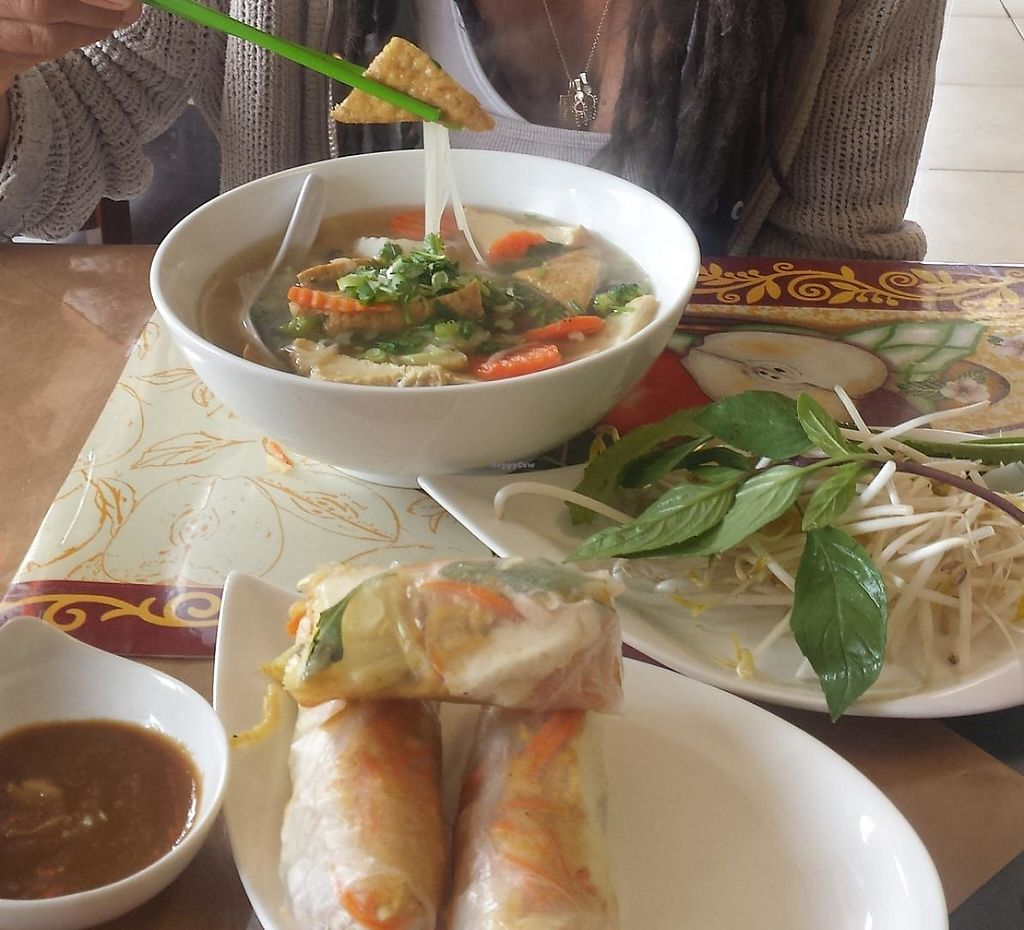 """Photo of Veggie Garden  by <a href=""""/members/profile/Mamadreads"""">Mamadreads</a> <br/>Vegan pho with Tofu and Spring rolls <br/> March 4, 2014  - <a href='/contact/abuse/image/28560/197069'>Report</a>"""
